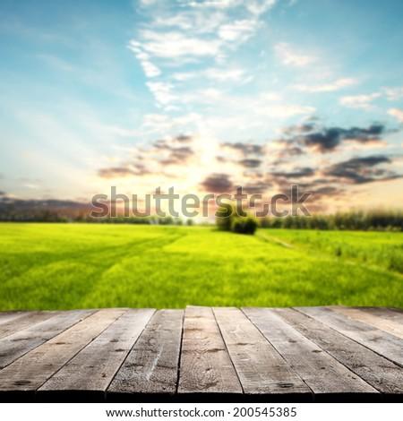 rural floor and landscape  #200545385