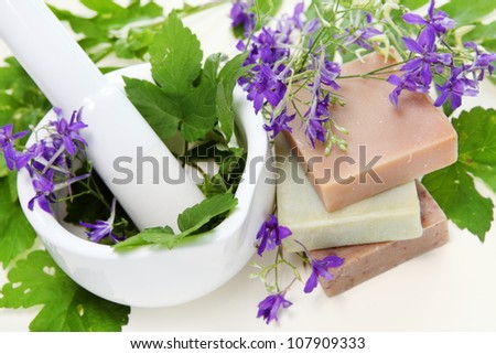 Rural Flowers and Herbs in Mortar Spa Composition