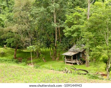 Rural house ,Chiangmai,Thailand