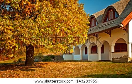 Rural house in autumn