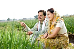 Rural Indian couple in agricultural field