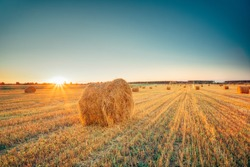 Rural Landscape Field Meadow With Hay Bales After Harvest In Sunny Evening At Sunset Or Sunrise In Late Summer. Blue Sunny Sky And Sun With Sunrays.