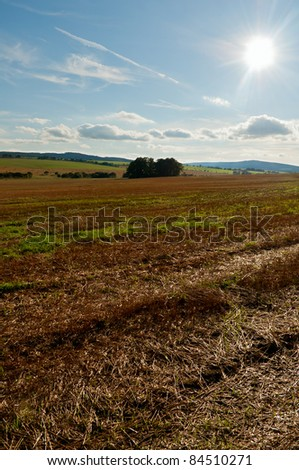 Rural Landscape - Harvested Agricultural Field and Blue Sky