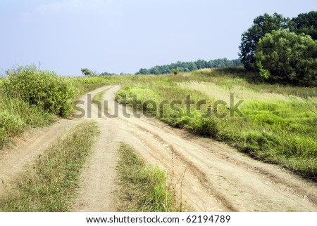 Rural landscape in a summer day