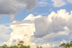 Rural landscape in South America. An image of an agropastoral farm and cumulonimbus clouds in the background that are characterized by a great vertical development.