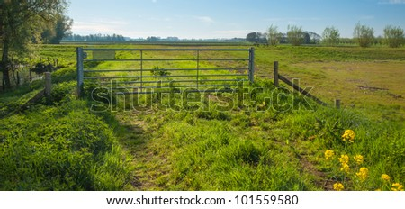 Rural landscape in spring with a steel fence on the upper side of a dike in the Netherlands.