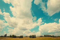 Rural landscape in summer. Uncultivated field and sky with fluffy clouds on a sunny day.
