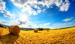 Rural landscape in vivid blue and yellow, a scenery of the sun, blue sky and a harvested gold field
