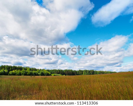 Rural landscape, look in the field and the sky in good weather. The wood and hills is in the distance visible. Sunny weather.