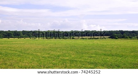 Rural Landscape of a Green Field below an Overcast Sky