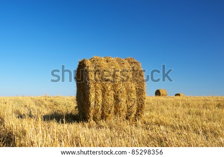 Rural landscape of haystacks on the field - stock photo
