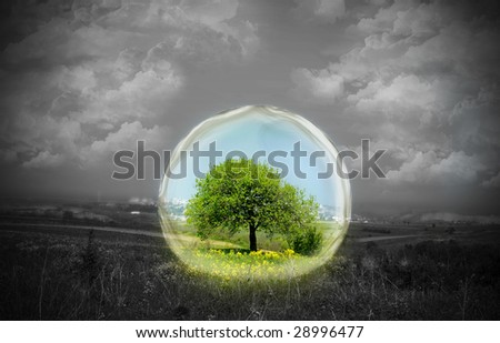 Rural landscape shot with a tree and flowers in the center of the shot in color and surrounded by glass. The remainder of the photo is in black and white. Conceptual.