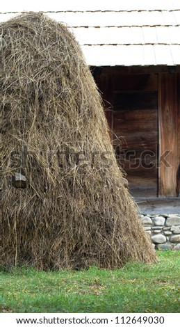 Rural landscape: traditional georgian wine jug and hay