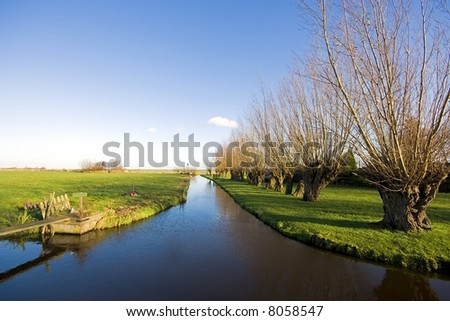 Rural landscape with cropped willows and canal and wide view in Holland