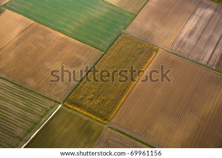 rural landscape with fields in indian summer light from hot air balloon