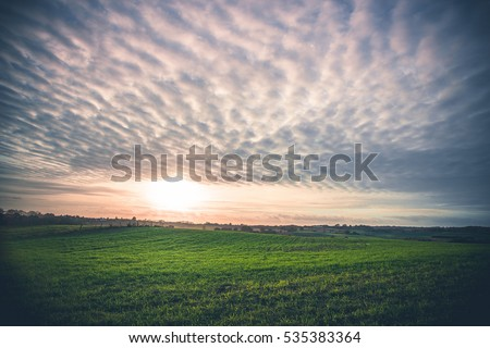 rural landscape with green...
