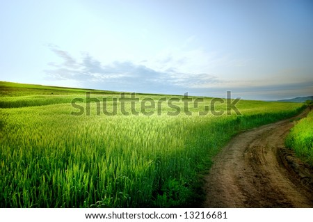 Rural landscape with road and blue sky - stock photo