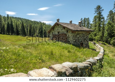 Stock Photo Rural mountain house with stone fence wall over a green yard against the forest and a blue sky. Mountain landscape in Valtellina, Italy.