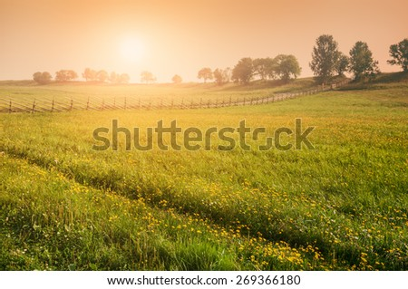 Rural nature at sunset. Beautiful summer landscape with field. Creative vintage filter, retro effect #269366180