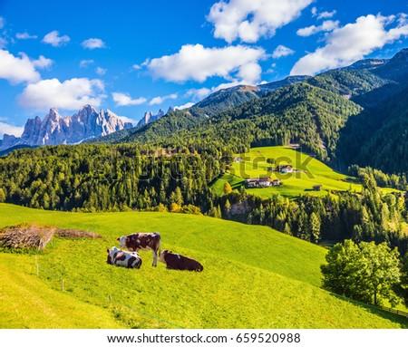 Rural tourism definition