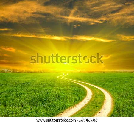 Rural path across green field