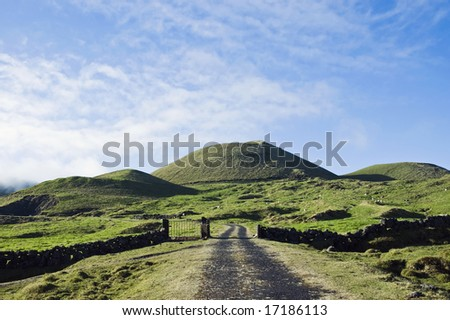 Rural road across the green pasture fields in Pico island, Azores