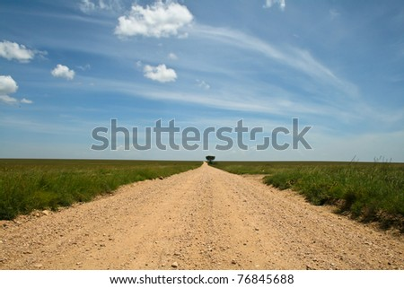 Rural road going to horizon in Serengeti national park, Tanzania.
