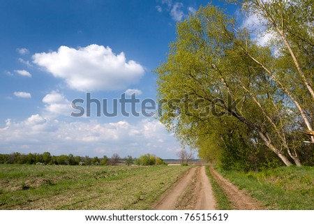 Rural road in steppe in nice day