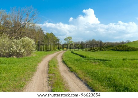 rural road in summer time - stock photo