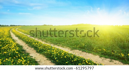 Rural road in the field and sun.
