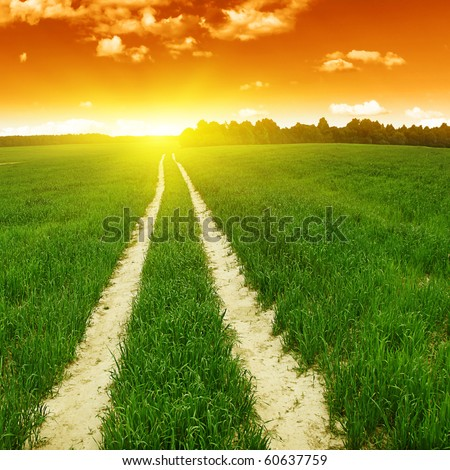 Rural road in the field and sunset.