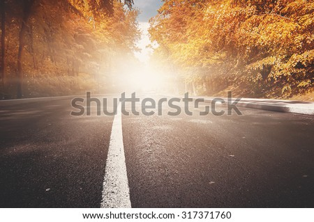rural road. natural autumn background