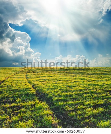 rural road on green field