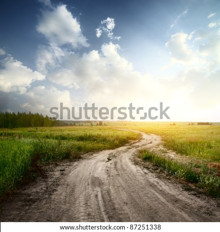 Rural road through fields with green herbs and blue sky with clouds