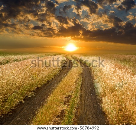 Rural road to sunset in steppe