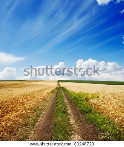 rural road under cloudy sky #80248720