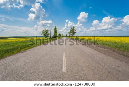 Rural road with fields of canola under the blue sky