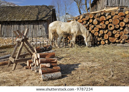 Rural scene from a village in countryside Macedonia