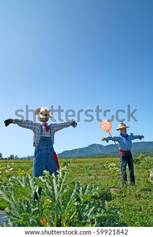 Rural scene ? two scarecrows in the field.