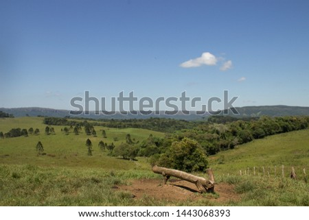 Rural scenery with beautiful scenery and a trunk like bench. Guartela Canyon - Brazil.  #1443068393