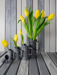 Rural still life,yellow tulips bunch in 5 cast-iron steel jug set,various sizes arranged in ascending order,wooden boards background,hand painted gray.Rustic interior poster,copy space,trendy colors.