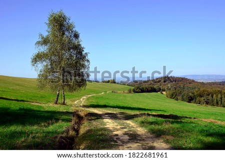 Rural summer landscape in countryside of Low Beskids (Beskid Niski), Poland. Beautiful summer landscape in the mountains with green meadows and forested hills. Zdjęcia stock ©