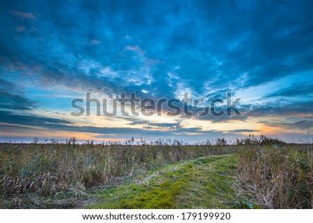 rural trail through grassy...