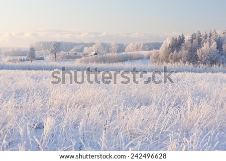 Rural winter landscape with white frost on the field of timber and lush clouds