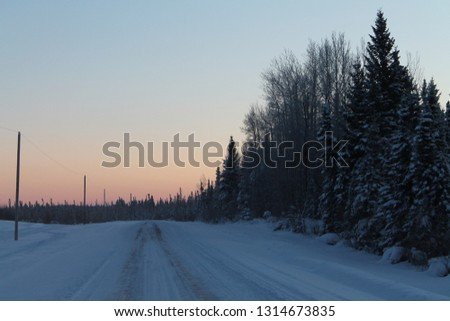Rural winter road at dusk with the lower sky colored peach by the sunset, a dark mass of evergreen and leafless poplar trees to the right of the road and a row of electrical poles along the left side. #1314673835