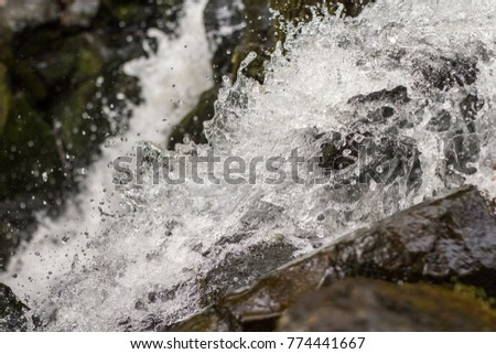 Rushing clean water in deep forsest