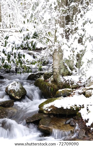 Rushing Mountain Stream, Winter, Monongahela National Forest, West Virginia, USA - stock photo