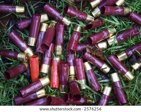 russet and purple spent shotgun cartridges litter forest floor after game shoot on private estate
