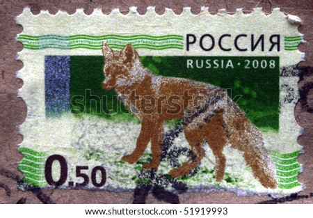 RUSSIA - CIRCA 2008: A stamp printed in Russia shows Red Fox - Vulpes vulpes, circa 2008