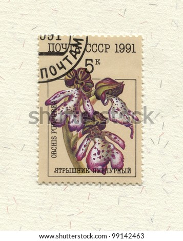 RUSSIA - CIRCA 1991: stamp printed by Russia, shows flower Orchids, circa 1991.